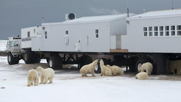 canada-unique-stays-tundra-lodge