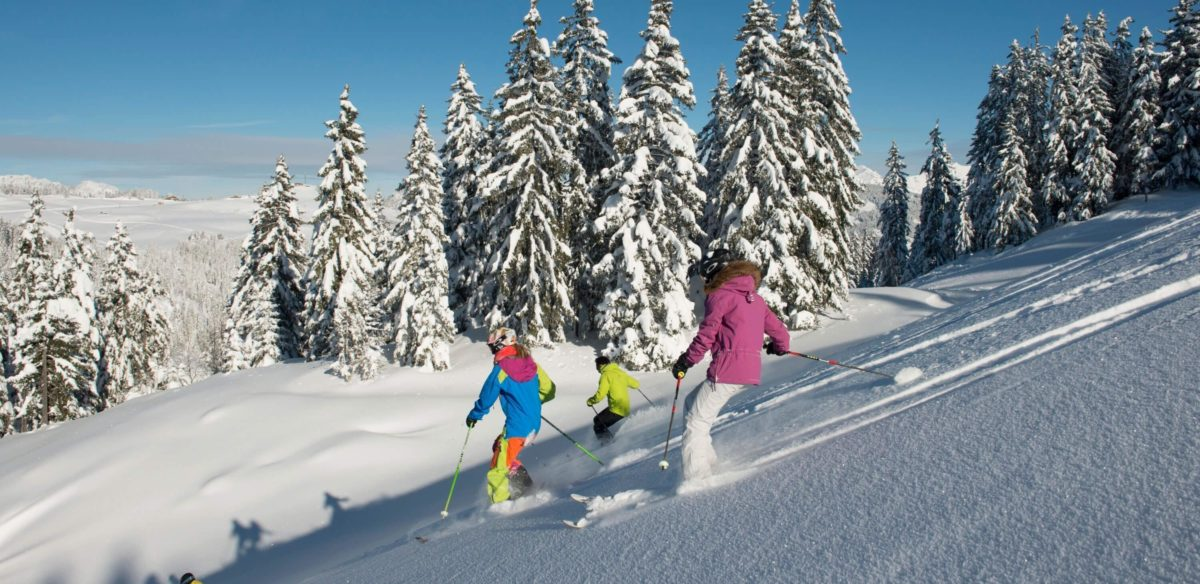 Le Grand Bornand, Top Snow Travel