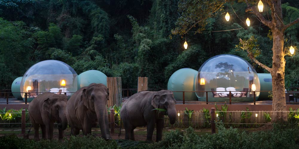 Jungle bubbles at Anantara Golden Triangle Elephant Camp & Resort