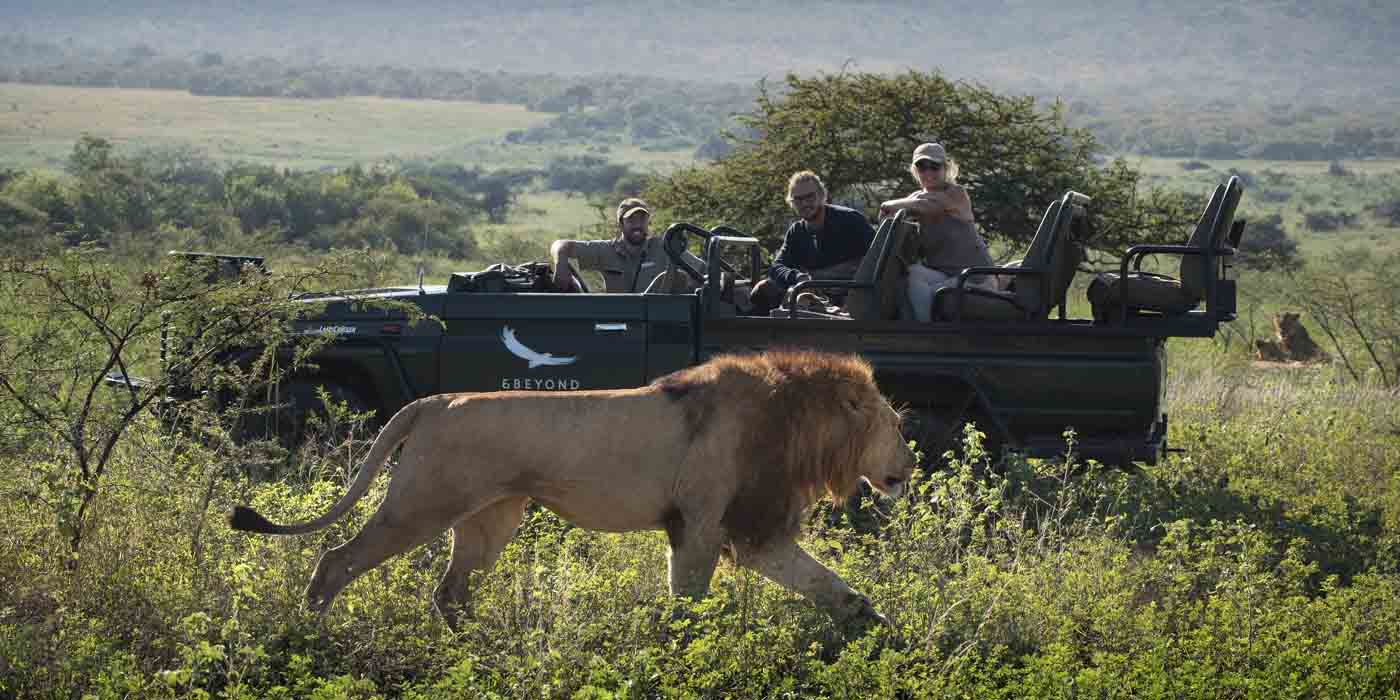 Bucket list, andBeyond Phinda Private Game Reserve