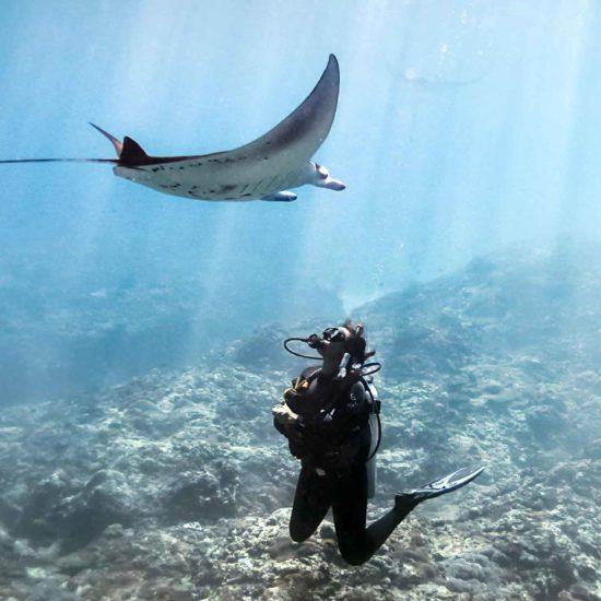 Four Seasons Private Jet Journeys, Bora Bora, bucket list