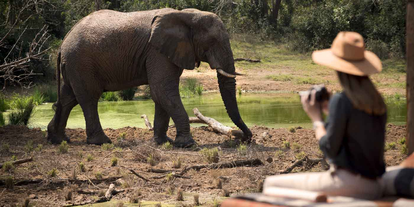 andBeyond Phinda Private Game Reserve, bucket list
