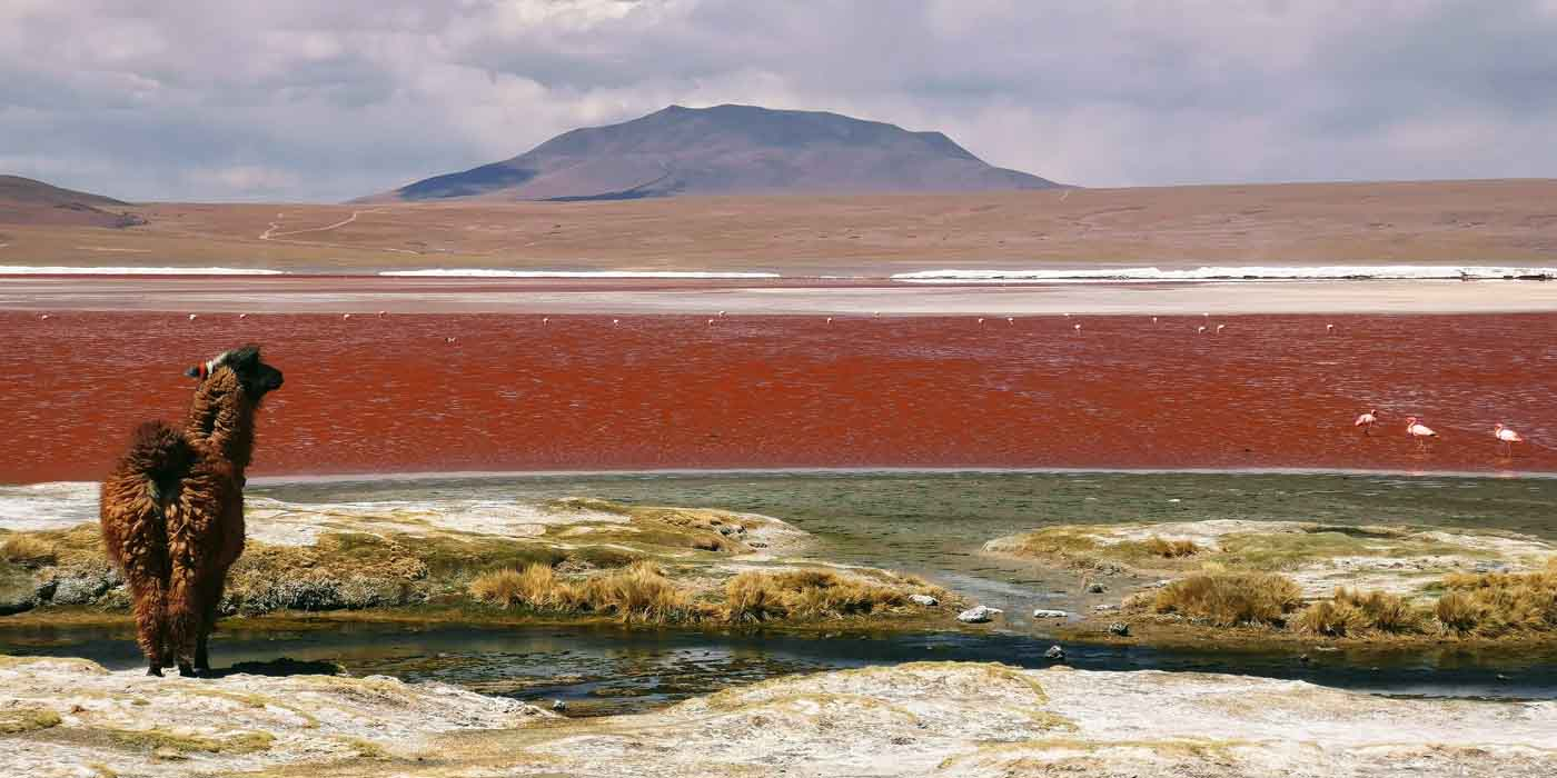 Bolivia, salt flats, Uyuni, bucket list