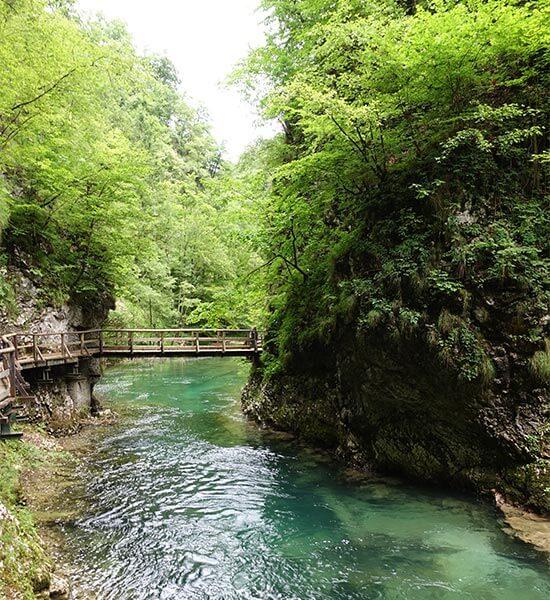 Port Slovenia with Wayfarer Experiences