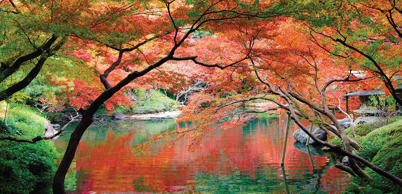 Autumnal colour at the beautiful Happo-en Gardens