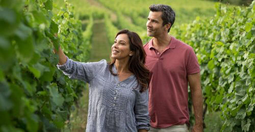 Avalon Excursion Vineyard Picnic