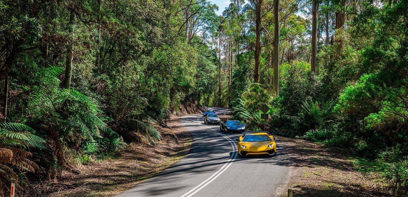 Road tripping around Tassie with Ultimate Driving Tours