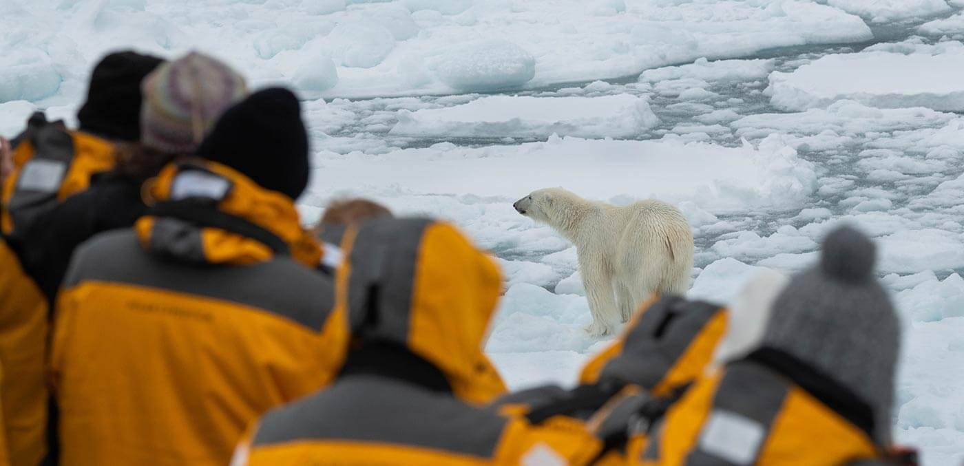 Three Arctic Islands Northbound