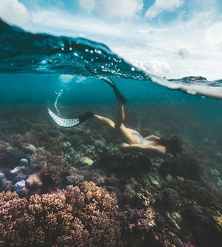 Snorkelling on Lizard Island