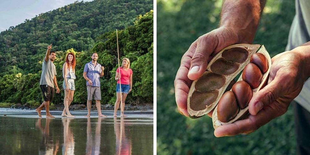 Tropical North Queensland Indigenous tour