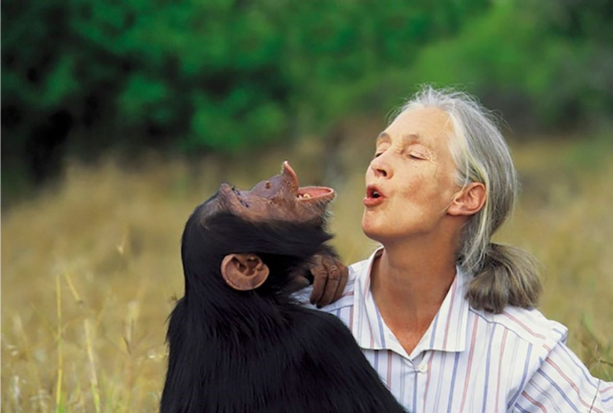 Jane Goodall with a money
