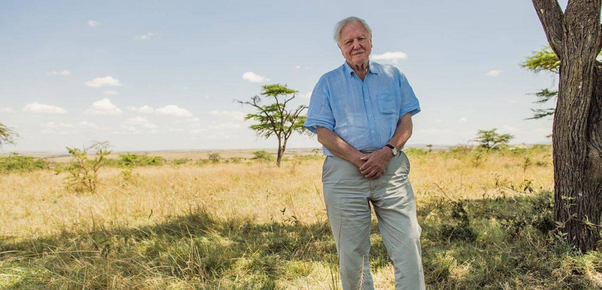 Sir David Attenborough pictured in the Maasai Mara, Kenya