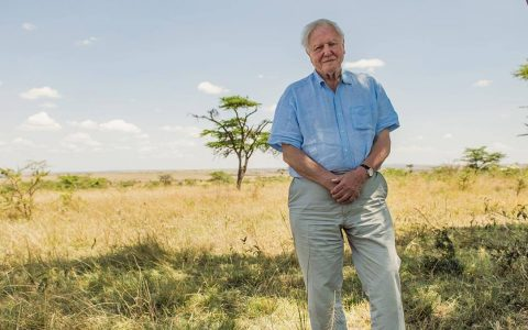 Sir David Attenborough pictured in the Maasai Mara, Kenya