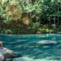 Incredibly clear Mossman Gorge
