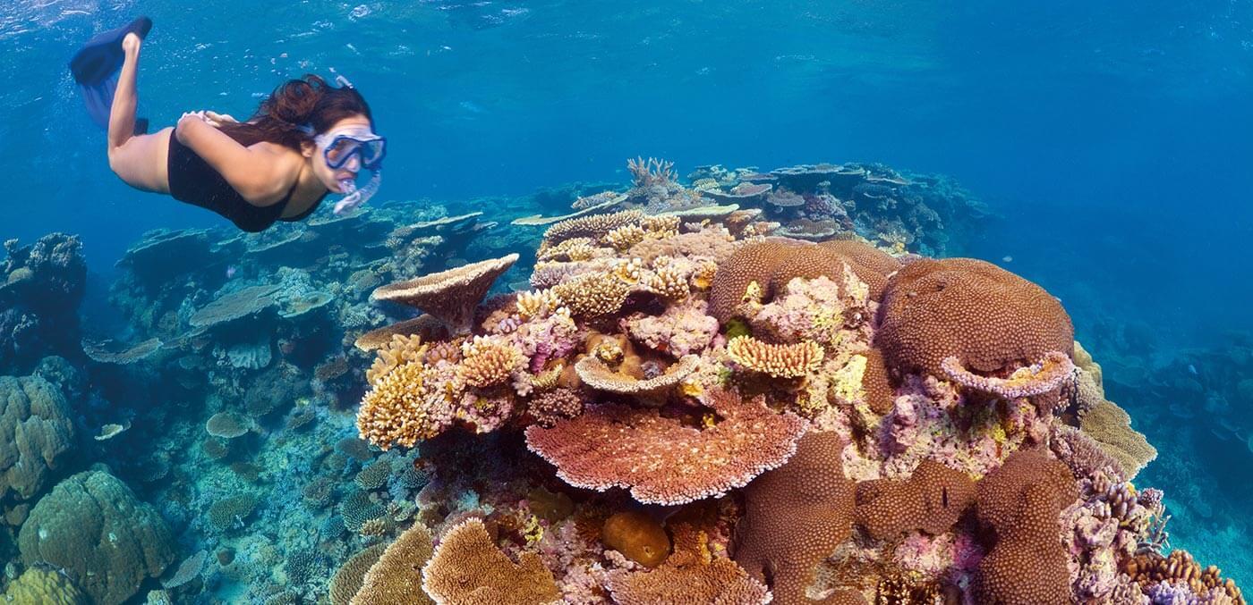 Turtle Bay and Dark Reef at Ribbon Reefs, Great Barrier Reef