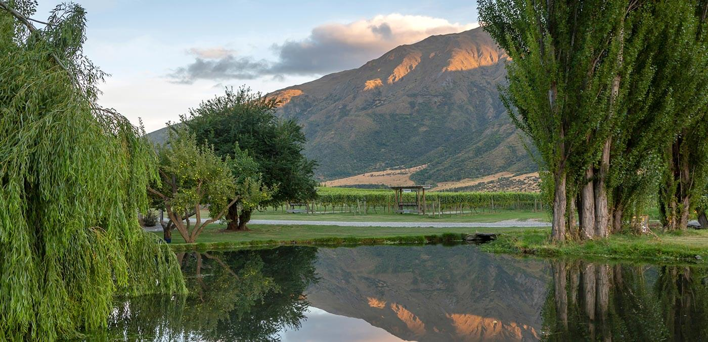 Drink up the view at Kinross, with five wineries at one cellar door