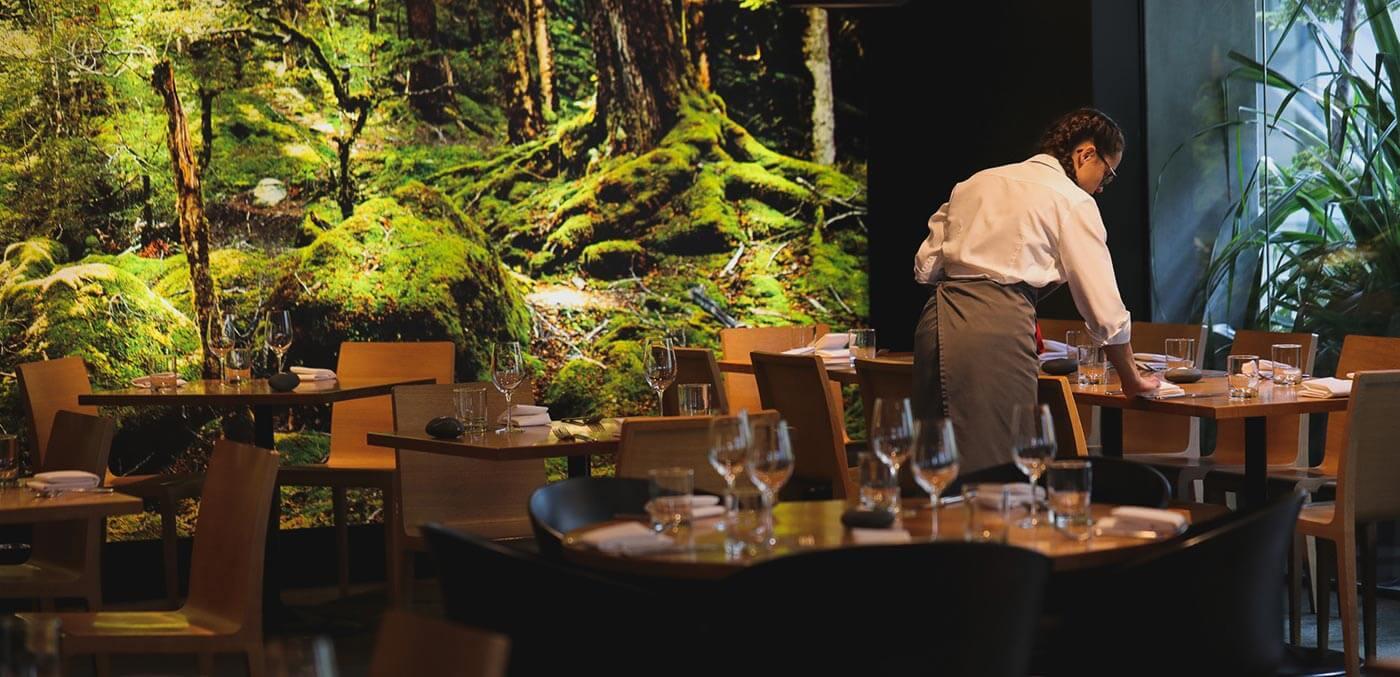 Nature and nurture unite in the Rata dining room