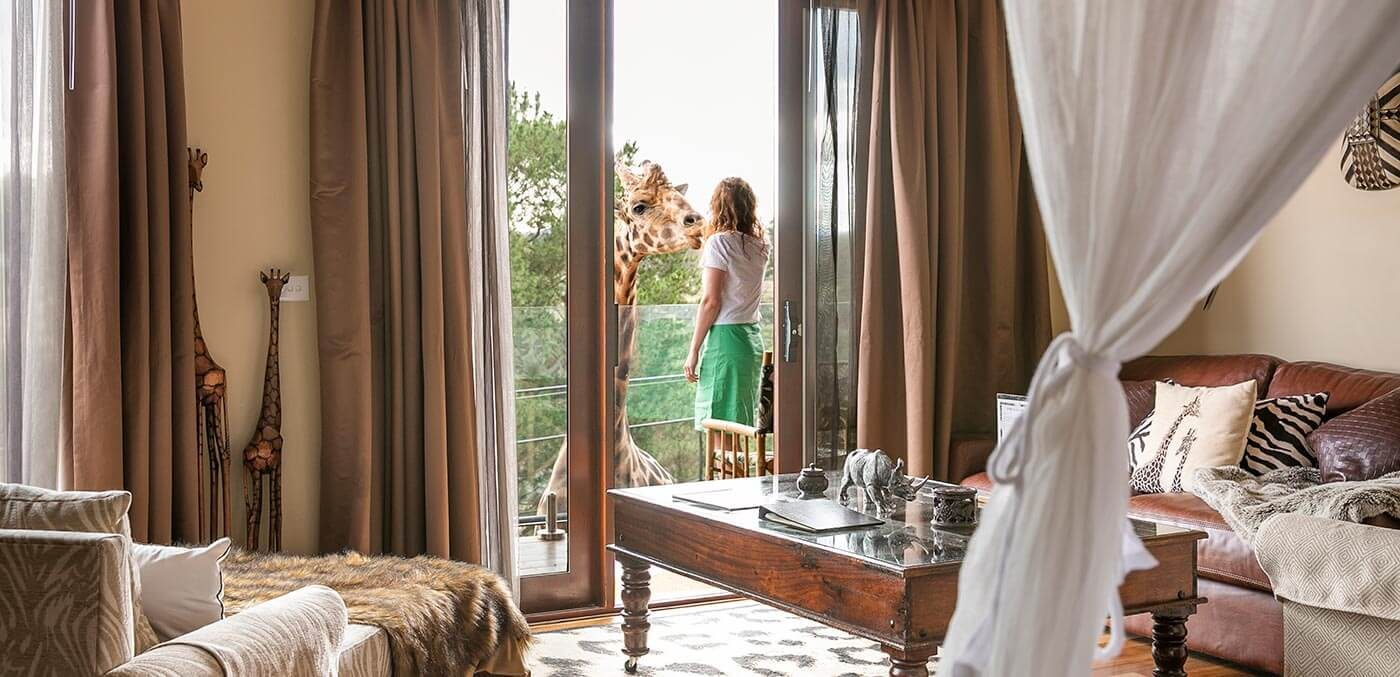 Giraffe Treehouse