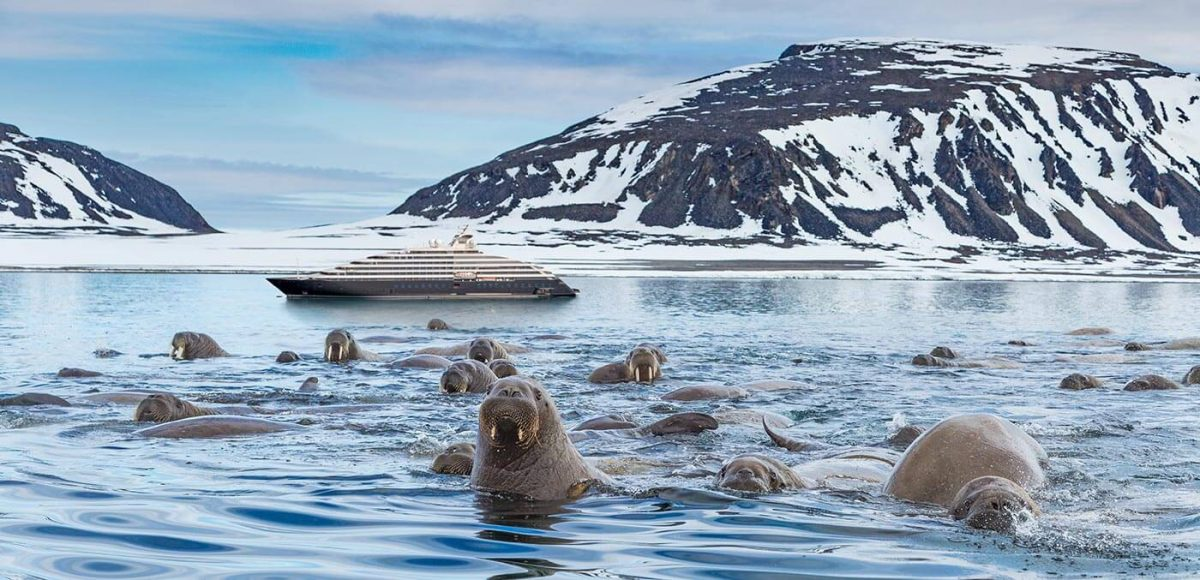 Scenic Eclipse cruise deal in the Arctic