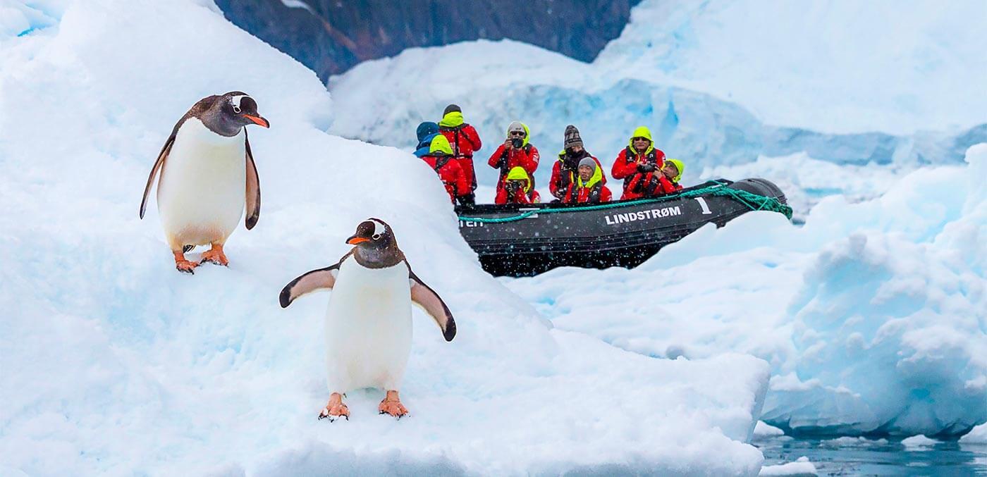 Neco Harbour, Antarctica